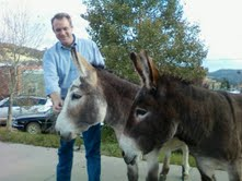 How to Greet a Donkey - Success!